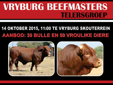 Vryburg Beefmaster Auction